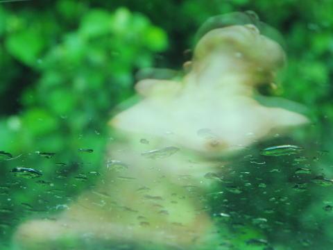 nude01.jpg