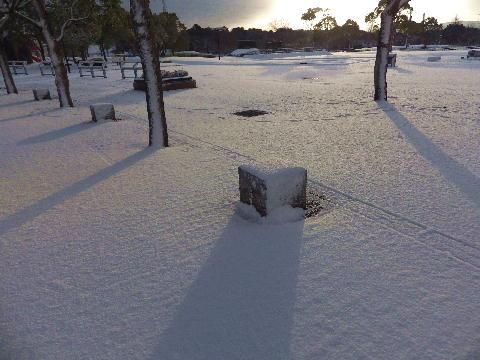 snow122501.jpg