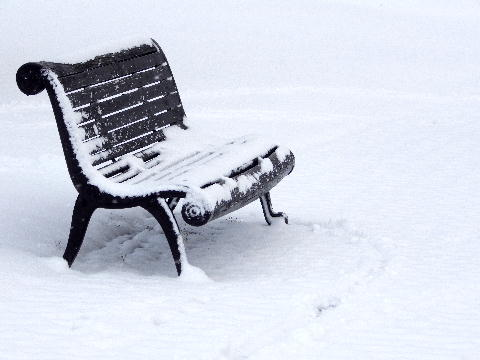 snow122503.jpg